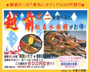 越前松島水族館 /></p>  <p>越前がにの解禁に合わせて、<a href=