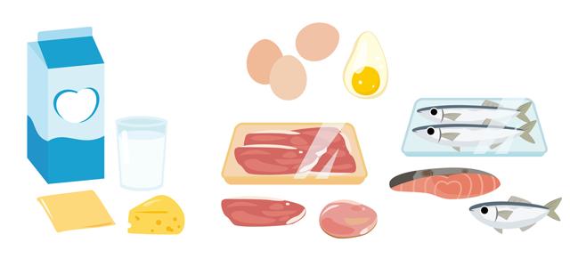 マクロビオティックと動物性タンパク質